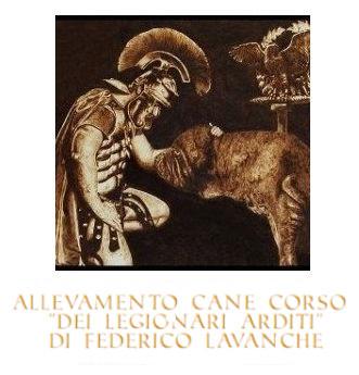 Allevamento Cane Corso Italiano - dei Legionari Arditi, Torino.